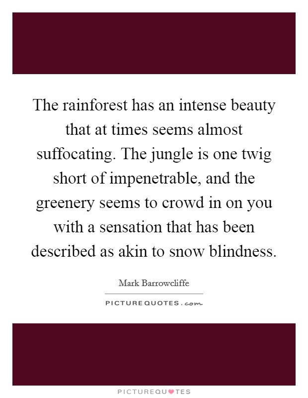 The rainforest has an intense beauty that at times seems almost suffocating. The jungle is one twig short of impenetrable, and the greenery seems to crowd in on you with a sensation that has been described as akin to snow blindness Picture Quote #1