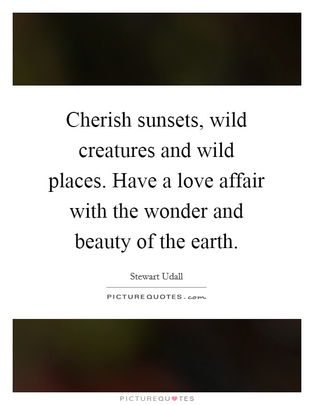 Cherish sunsets, wild creatures and wild places. Have a love affair with the wonder and beauty of the earth Picture Quote #1