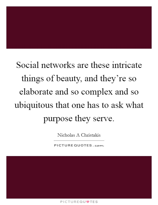 Social networks are these intricate things of beauty, and they're so elaborate and so complex and so ubiquitous that one has to ask what purpose they serve Picture Quote #1