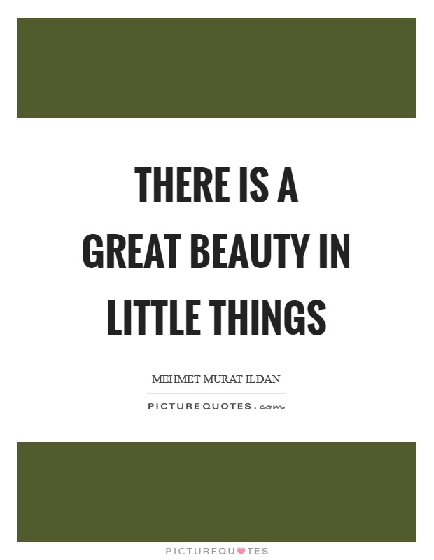 There is a great beauty in little things Picture Quote #1