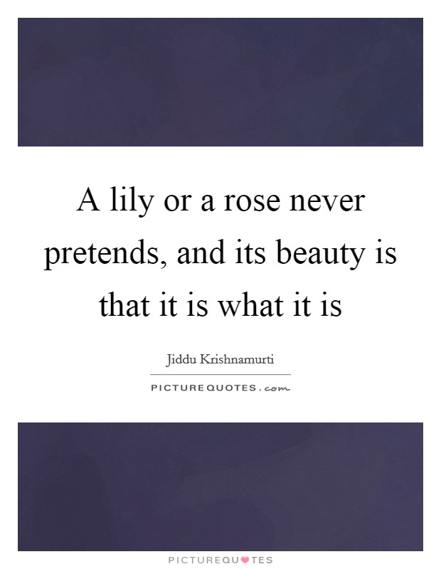 A lily or a rose never pretends, and its beauty is that it is what it is Picture Quote #1