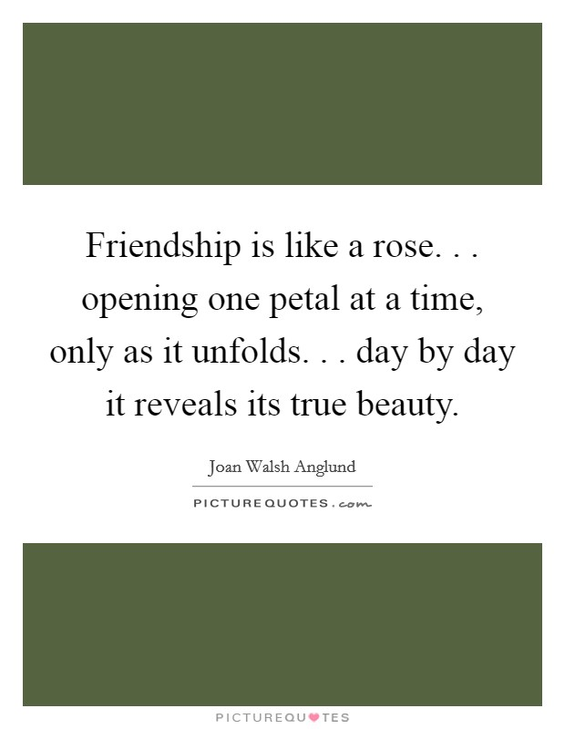 Friendship is like a rose. . . opening one petal at a time, only as it unfolds. . . day by day it reveals its true beauty Picture Quote #1