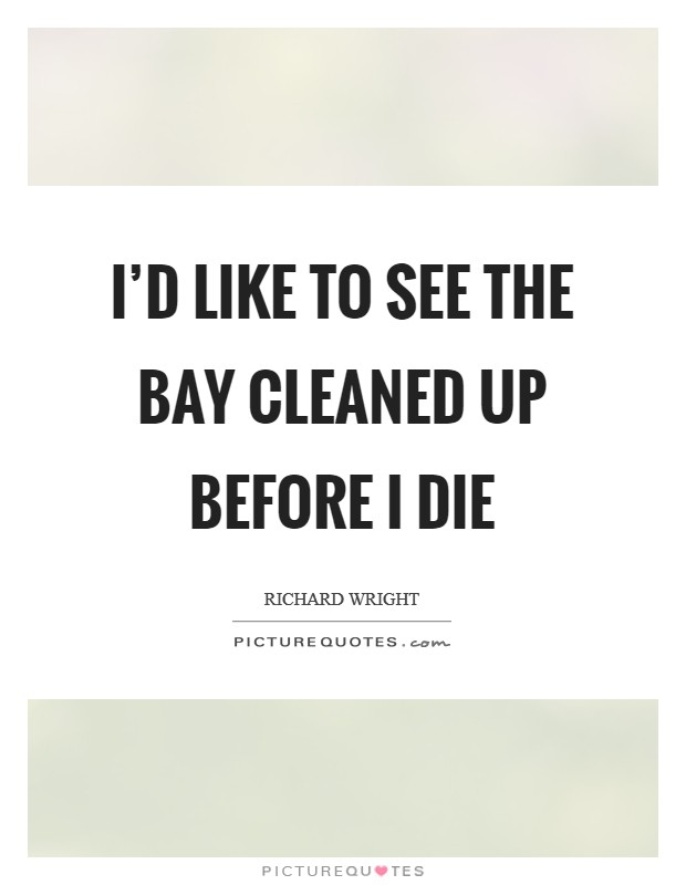 I'd like to see the bay cleaned up before I die Picture Quote #1