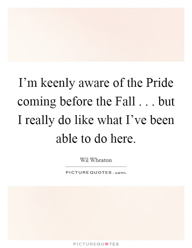 I'm keenly aware of the Pride coming before the Fall . . . but I really do like what I've been able to do here Picture Quote #1