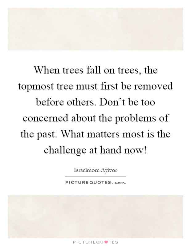When trees fall on trees, the topmost tree must first be removed before others. Don't be too concerned about the problems of the past. What matters most is the challenge at hand now! Picture Quote #1