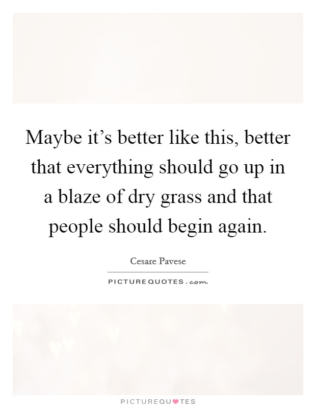 Maybe it's better like this, better that everything should go up in a blaze of dry grass and that people should begin again Picture Quote #1