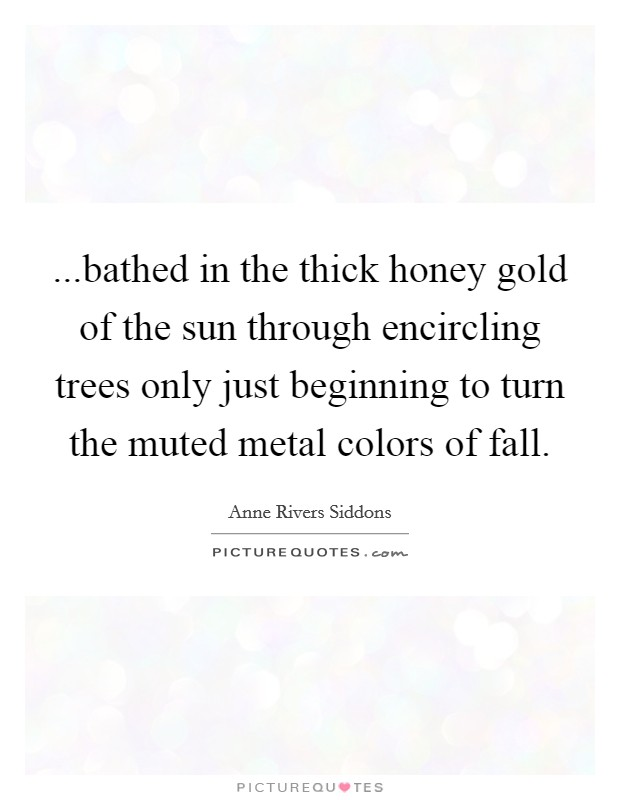 ...bathed in the thick honey gold of the sun through encircling trees only just beginning to turn the muted metal colors of fall Picture Quote #1