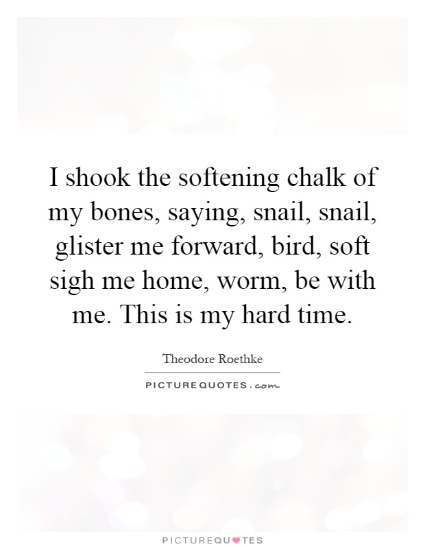 I shook the softening chalk of my bones, saying, snail, snail, glister me forward, bird, soft sigh me home, worm, be with me. This is my hard time Picture Quote #1
