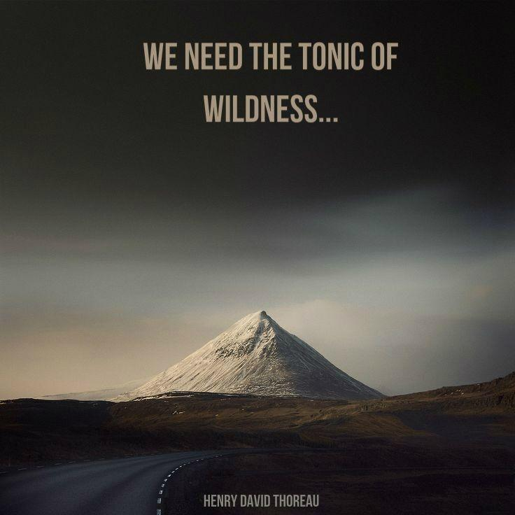 We need the tonic of wildness Picture Quote #1