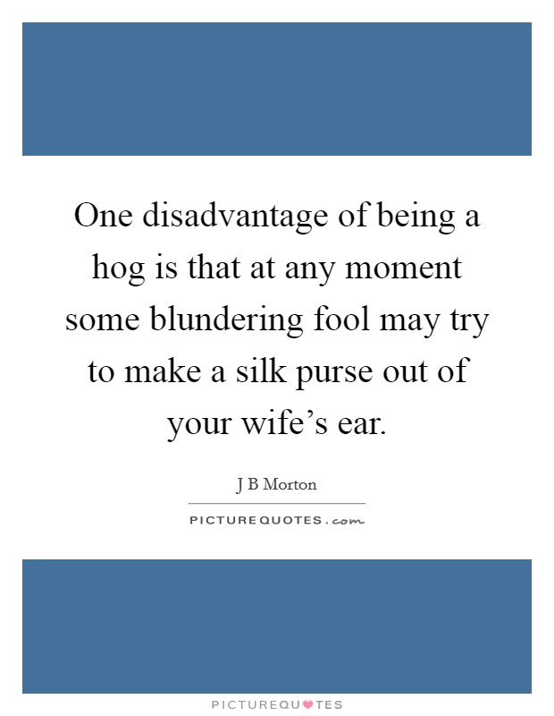 One disadvantage of being a hog is that at any moment some blundering fool may try to make a silk purse out of your wife's ear Picture Quote #1