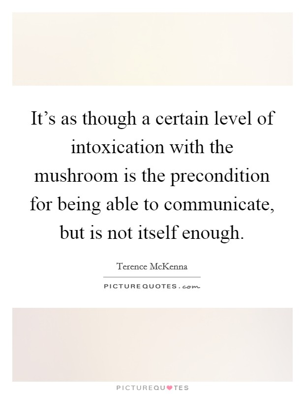It's as though a certain level of intoxication with the mushroom is the precondition for being able to communicate, but is not itself enough Picture Quote #1
