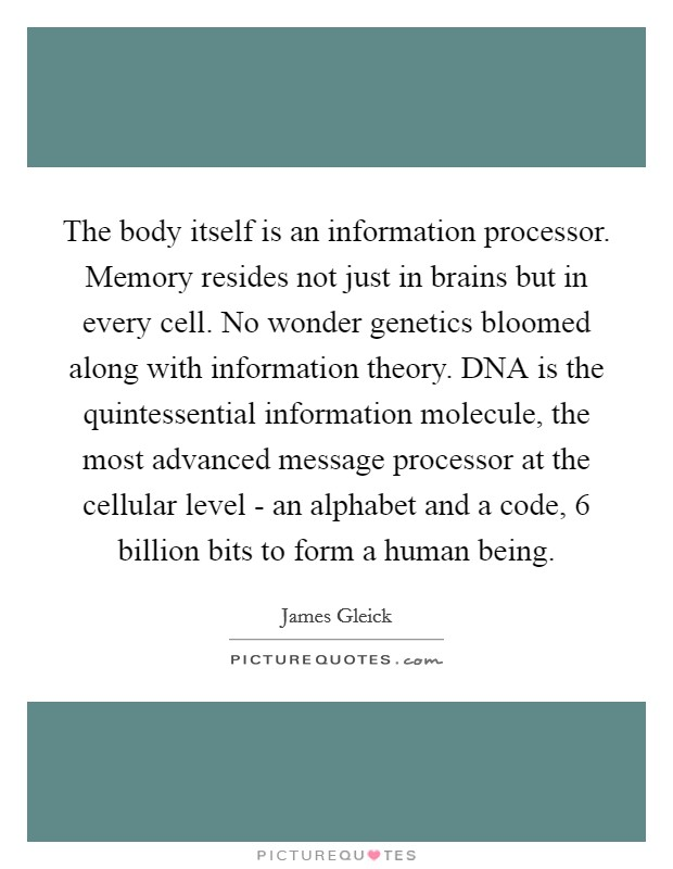 The body itself is an information processor. Memory resides not just in brains but in every cell. No wonder genetics bloomed along with information theory. DNA is the quintessential information molecule, the most advanced message processor at the cellular level - an alphabet and a code, 6 billion bits to form a human being Picture Quote #1