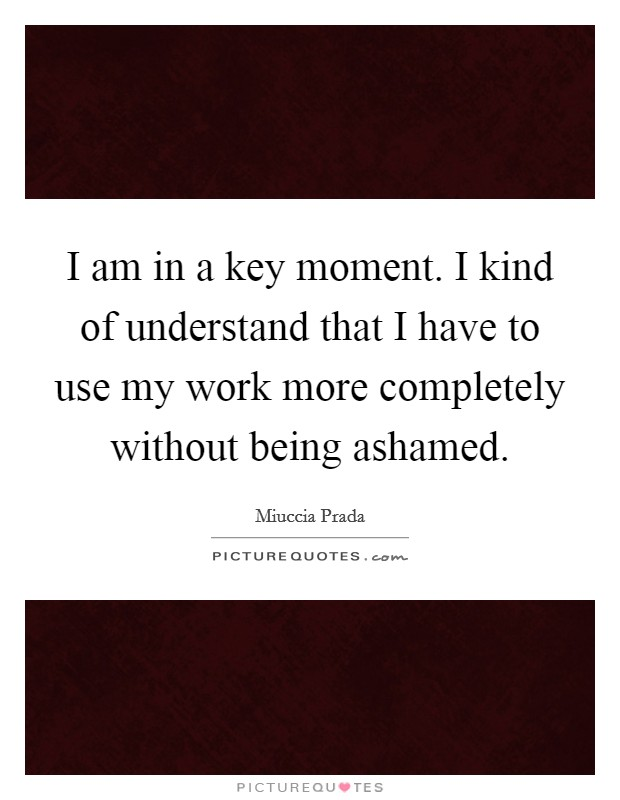 I am in a key moment. I kind of understand that I have to use my work more completely without being ashamed. Picture Quote #1