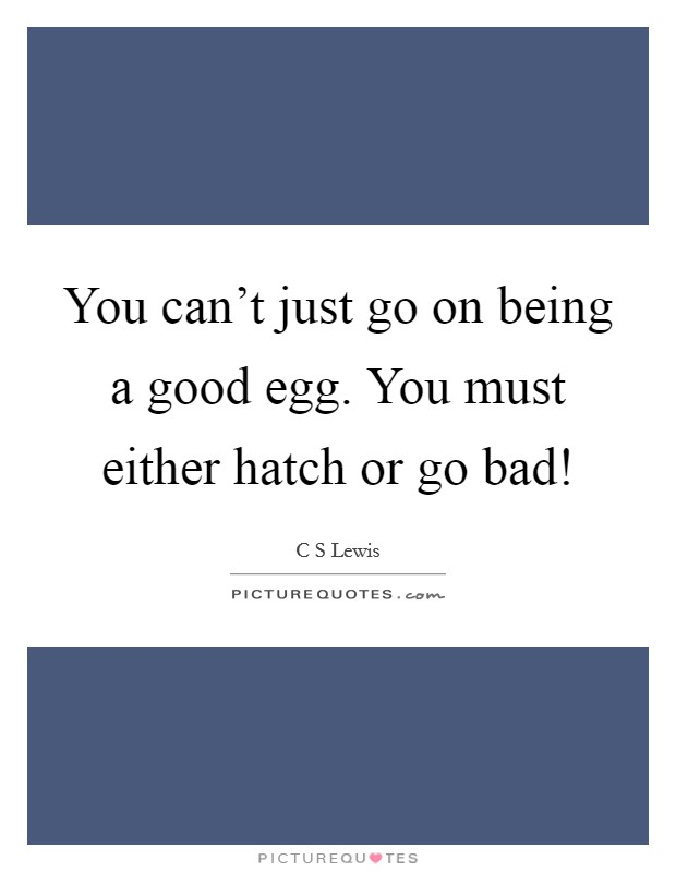 You can't just go on being a good egg. You must either hatch or go bad! Picture Quote #1
