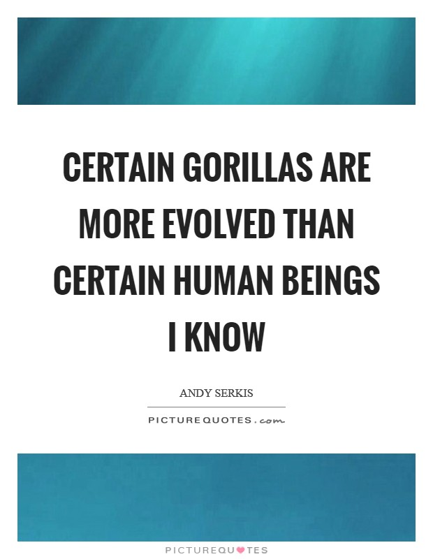 Certain gorillas are more evolved than certain human beings I know Picture Quote #1