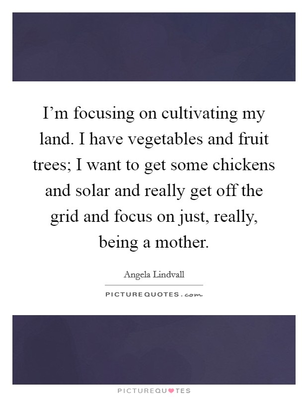 I'm focusing on cultivating my land. I have vegetables and fruit trees; I want to get some chickens and solar and really get off the grid and focus on just, really, being a mother Picture Quote #1