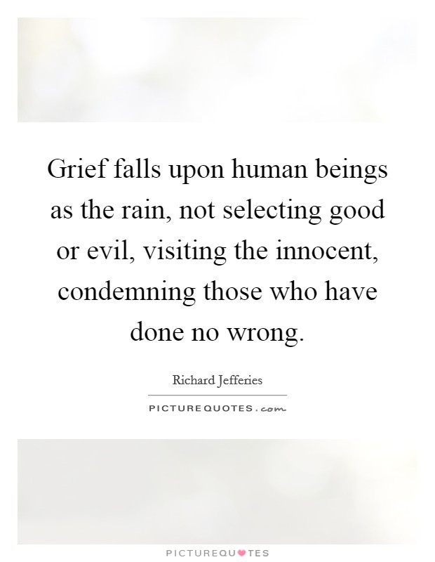 Grief falls upon human beings as the rain, not selecting good or evil, visiting the innocent, condemning those who have done no wrong Picture Quote #1