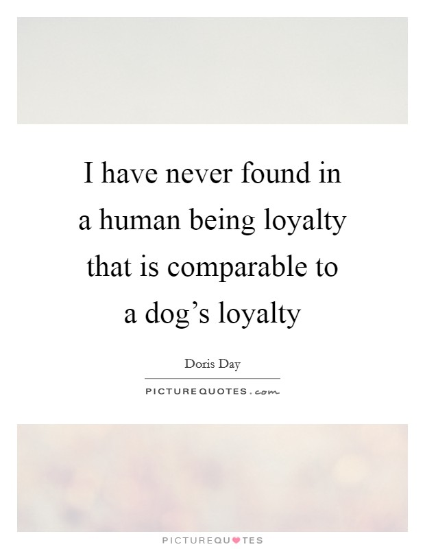 I have never found in a human being loyalty that is comparable to a dog's loyalty Picture Quote #1