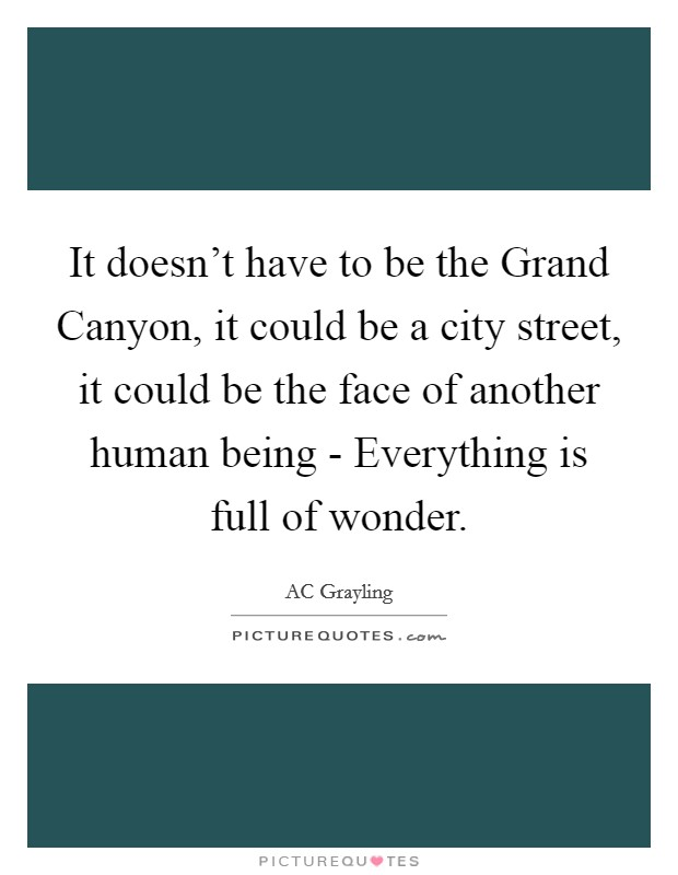 It doesn't have to be the Grand Canyon, it could be a city street, it could be the face of another human being - Everything is full of wonder Picture Quote #1