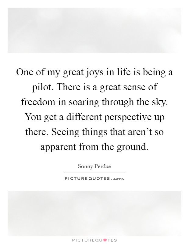 One of my great joys in life is being a pilot. There is a great sense of freedom in soaring through the sky. You get a different perspective up there. Seeing things that aren't so apparent from the ground Picture Quote #1