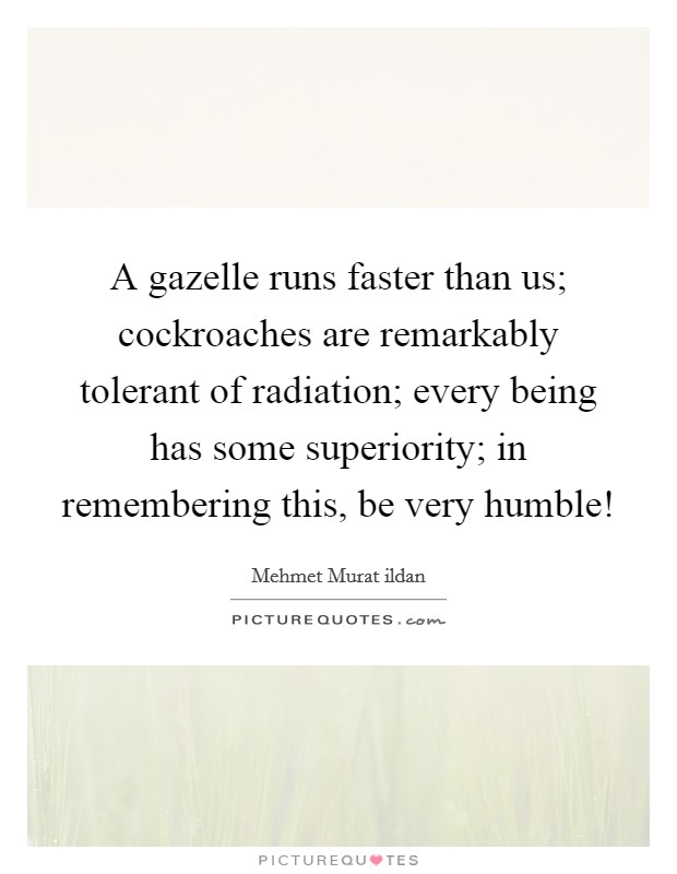 A gazelle runs faster than us; cockroaches are remarkably tolerant of radiation; every being has some superiority; in remembering this, be very humble! Picture Quote #1
