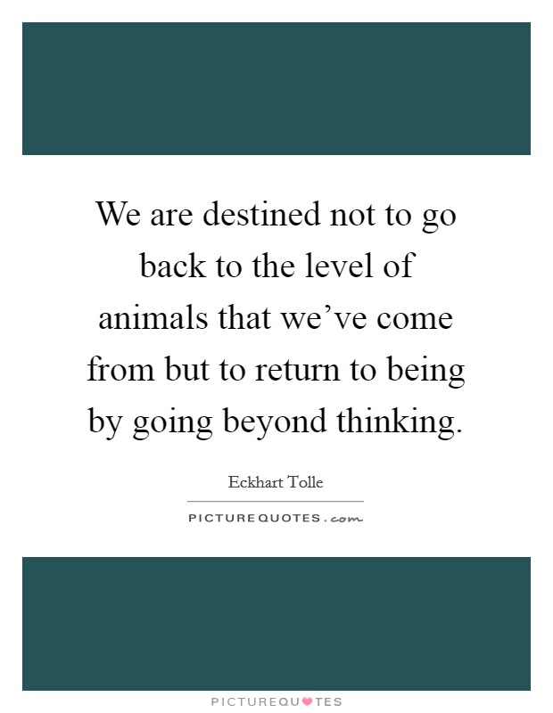 We are destined not to go back to the level of animals that we've come from but to return to being by going beyond thinking Picture Quote #1