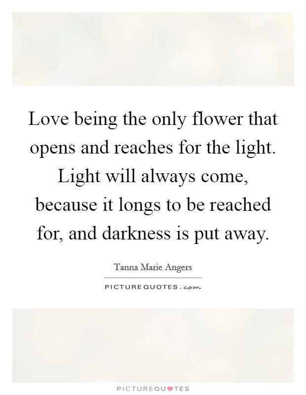 Love being the only flower that opens and reaches for the light. Light will always come, because it longs to be reached for, and darkness is put away Picture Quote #1
