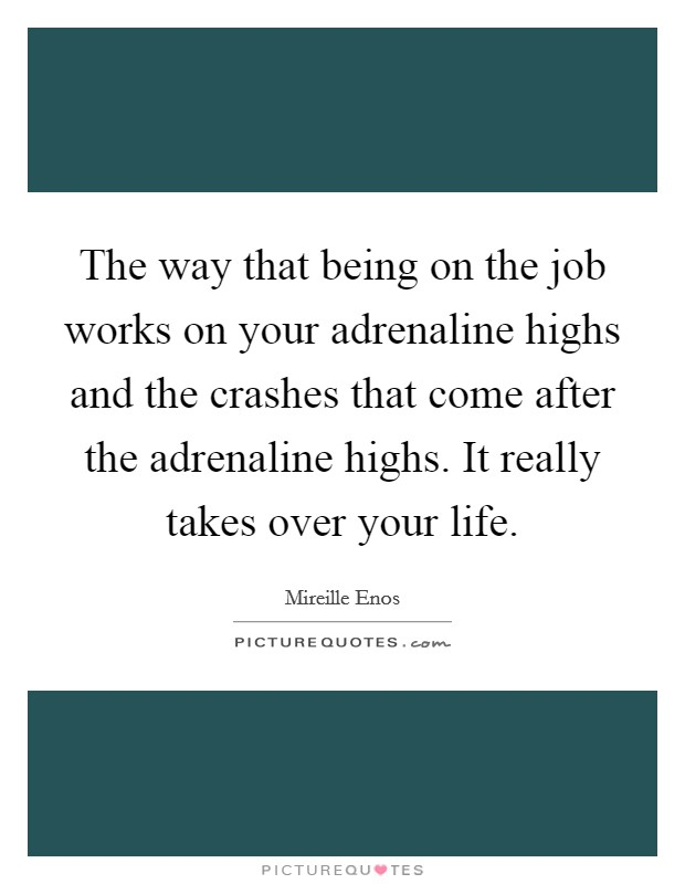 The way that being on the job works on your adrenaline highs and the crashes that come after the adrenaline highs. It really takes over your life Picture Quote #1