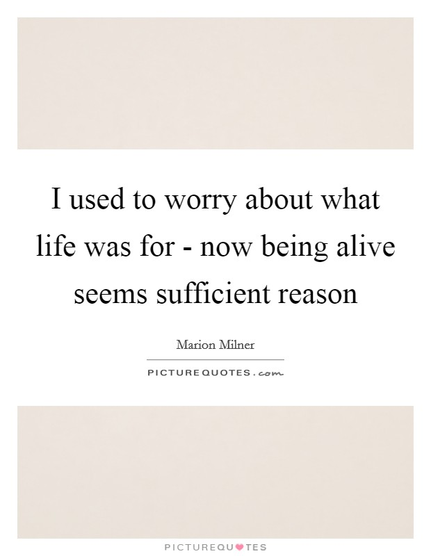 I used to worry about what life was for - now being alive seems sufficient reason Picture Quote #1