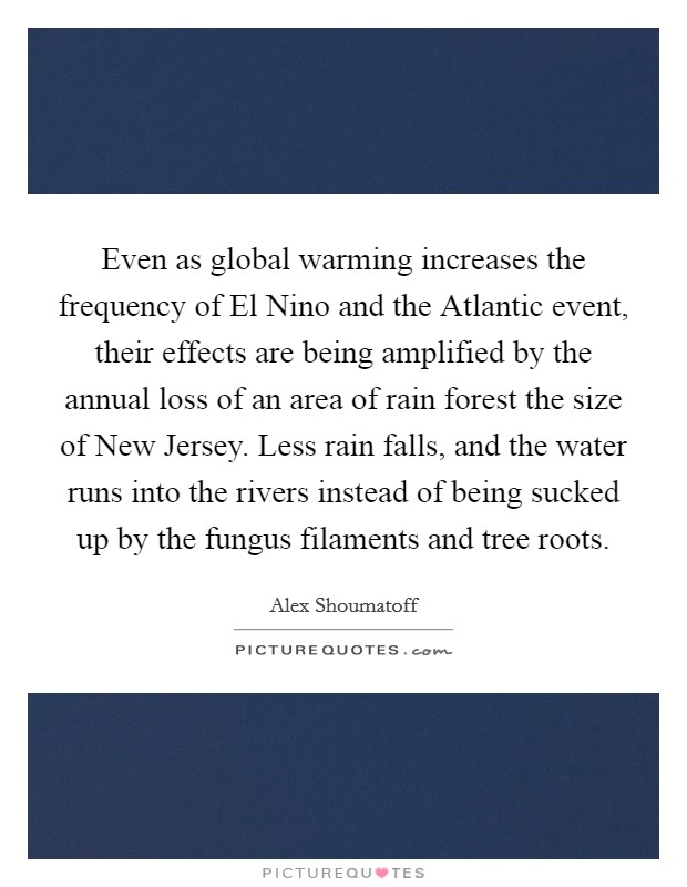 Even as global warming increases the frequency of El Nino and the Atlantic event, their effects are being amplified by the annual loss of an area of rain forest the size of New Jersey. Less rain falls, and the water runs into the rivers instead of being sucked up by the fungus filaments and tree roots Picture Quote #1