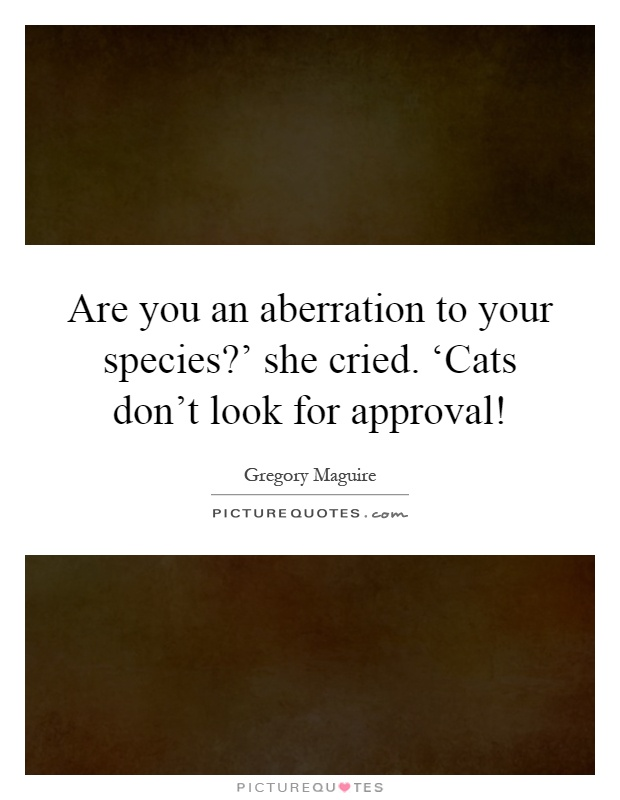 Are you an aberration to your species?' she cried. 'Cats don't look for approval! Picture Quote #1