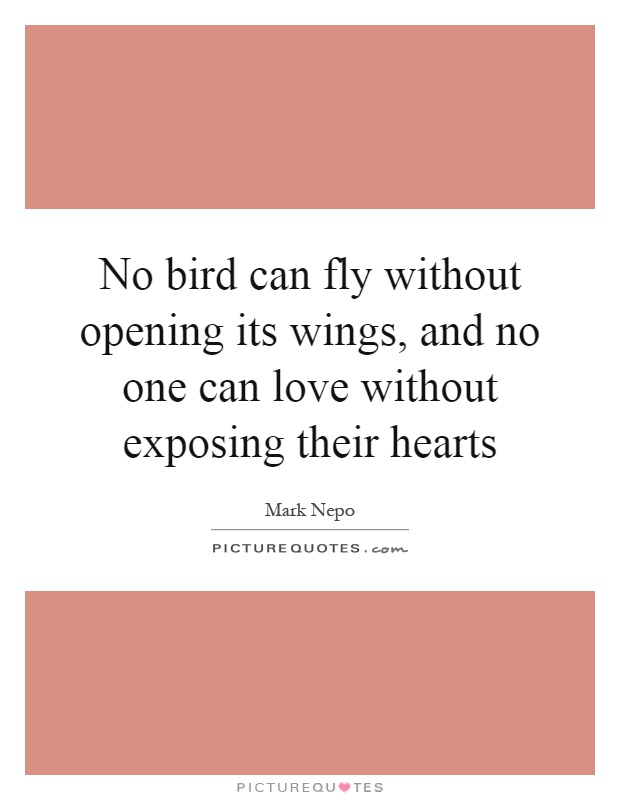 No bird can fly without opening its wings, and no one can love without exposing their hearts Picture Quote #1