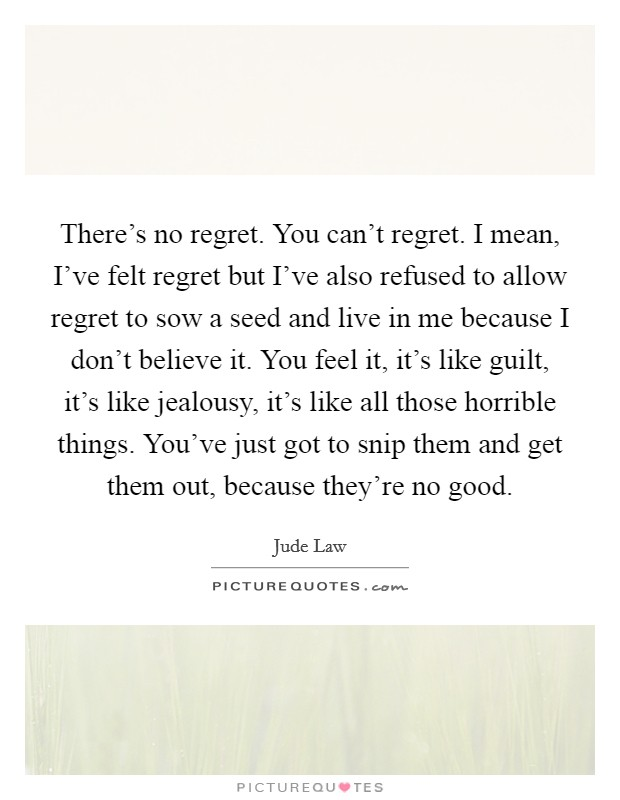 There's no regret. You can't regret. I mean, I've felt regret but I've also refused to allow regret to sow a seed and live in me because I don't believe it. You feel it, it's like guilt, it's like jealousy, it's like all those horrible things. You've just got to snip them and get them out, because they're no good. Picture Quote #1