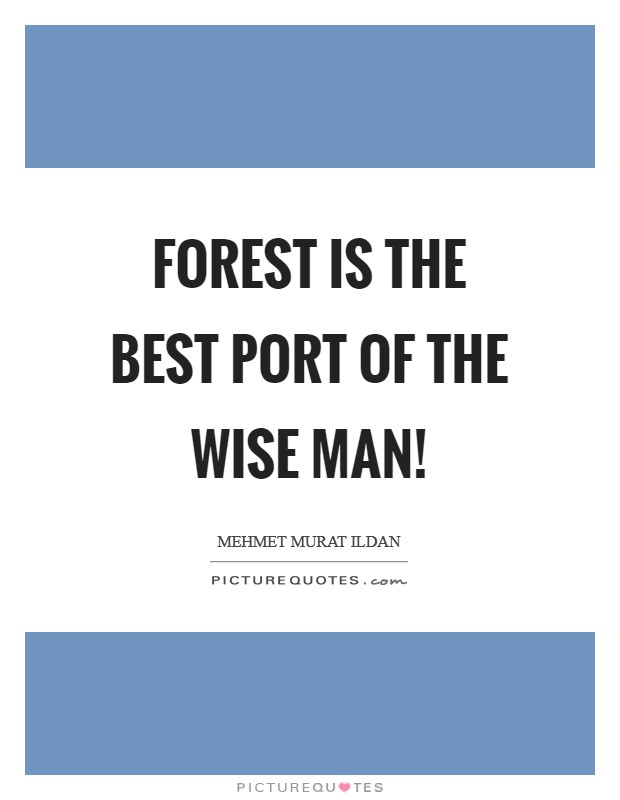 Forest is the best port of the wise man! Picture Quote #1