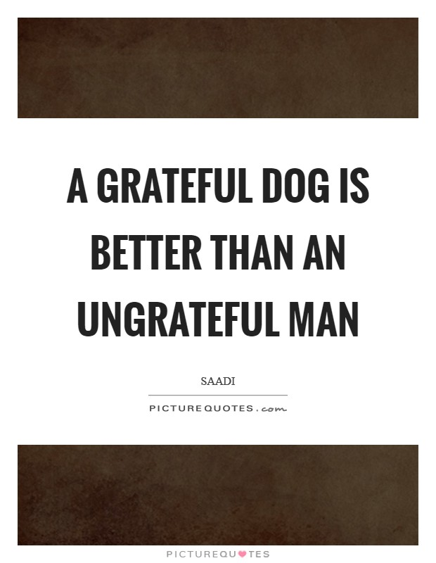 A grateful dog is better than an ungrateful man Picture Quote #1
