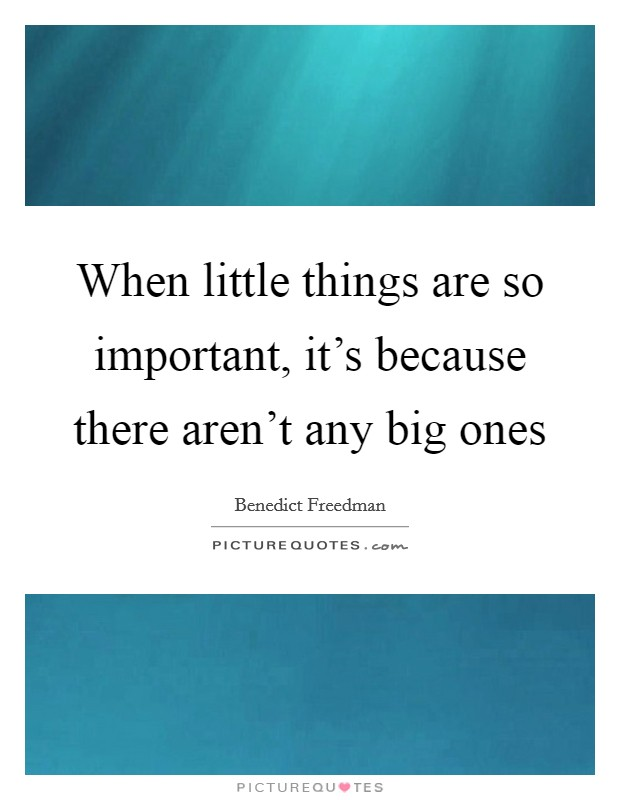 When little things are so important, it's because there aren't any big ones Picture Quote #1