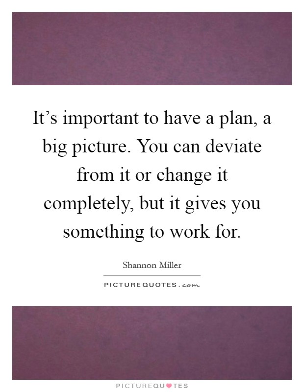 It's important to have a plan, a big picture. You can deviate from it or change it completely, but it gives you something to work for. Picture Quote #1