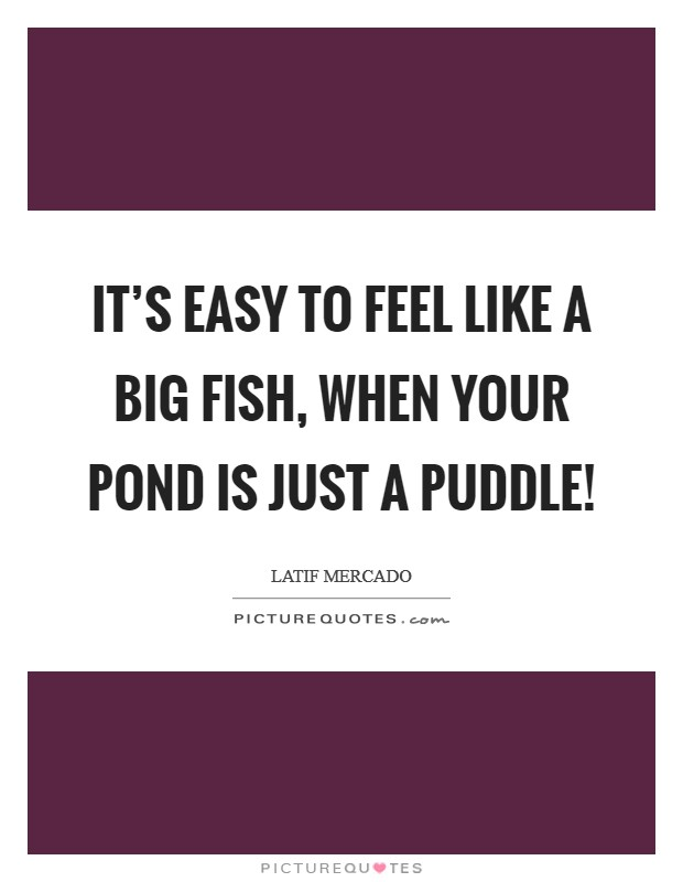 It's Easy To Feel Like A Big Fish, When Your Pond is Just A Puddle! Picture Quote #1