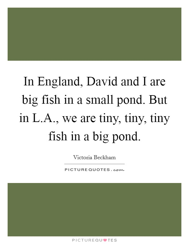 In England, David and I are big fish in a small pond. But in L.A., we are tiny, tiny, tiny fish in a big pond Picture Quote #1