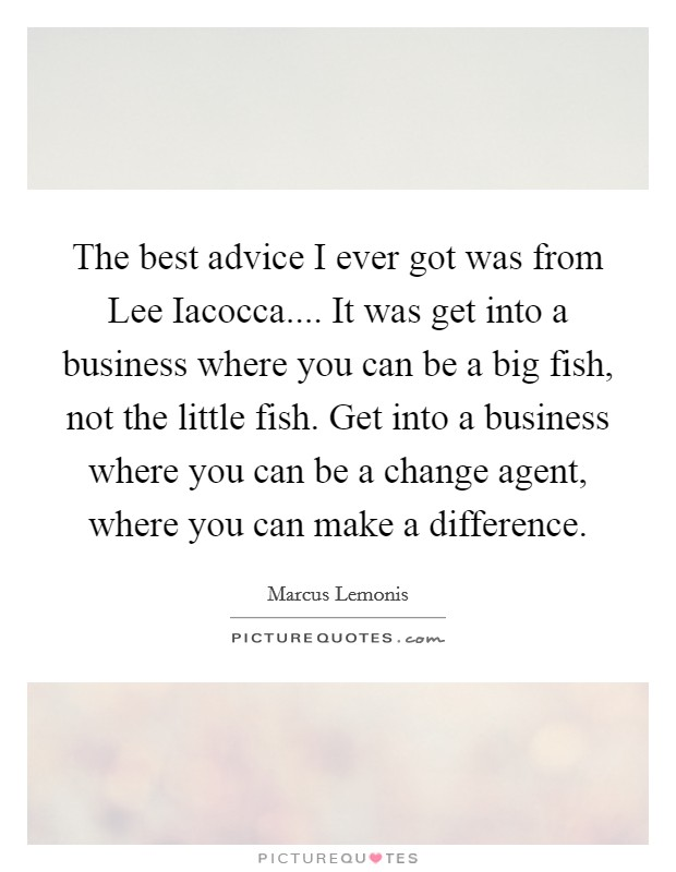 The best advice I ever got was from Lee Iacocca.... It was get into a business where you can be a big fish, not the little fish. Get into a business where you can be a change agent, where you can make a difference Picture Quote #1