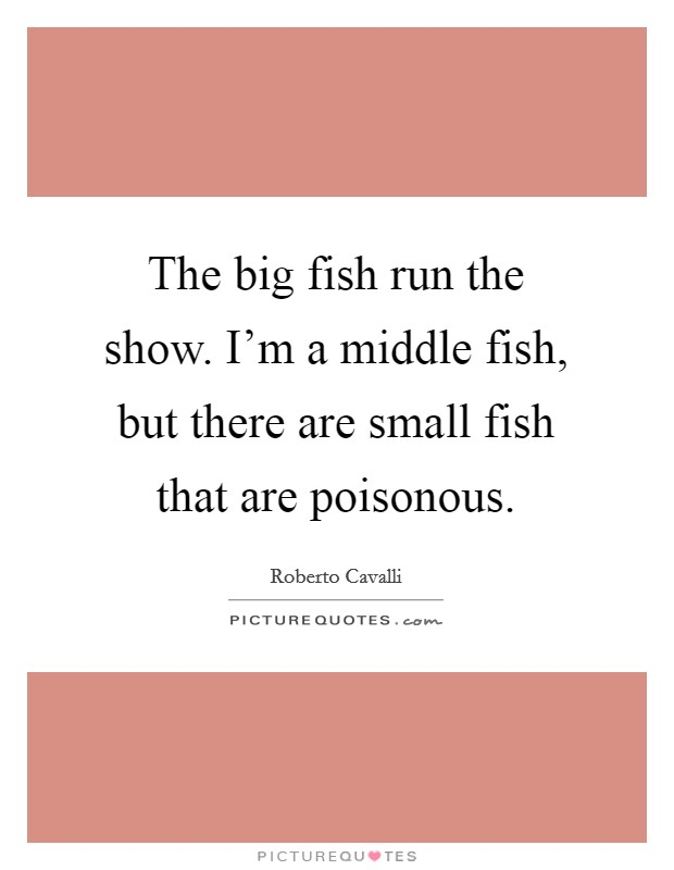 The big fish run the show. I'm a middle fish, but there are small fish that are poisonous Picture Quote #1
