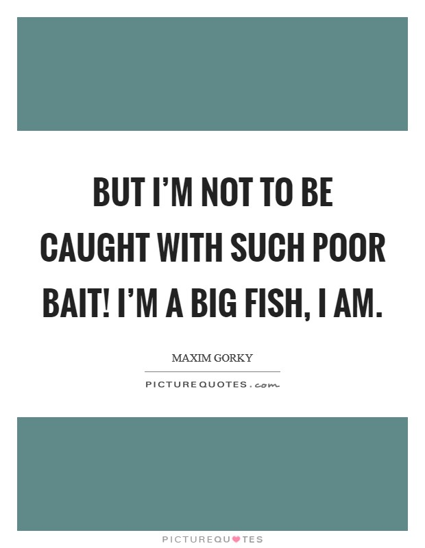 But I'm not to be caught with such poor bait! I'm a big fish, I am Picture Quote #1
