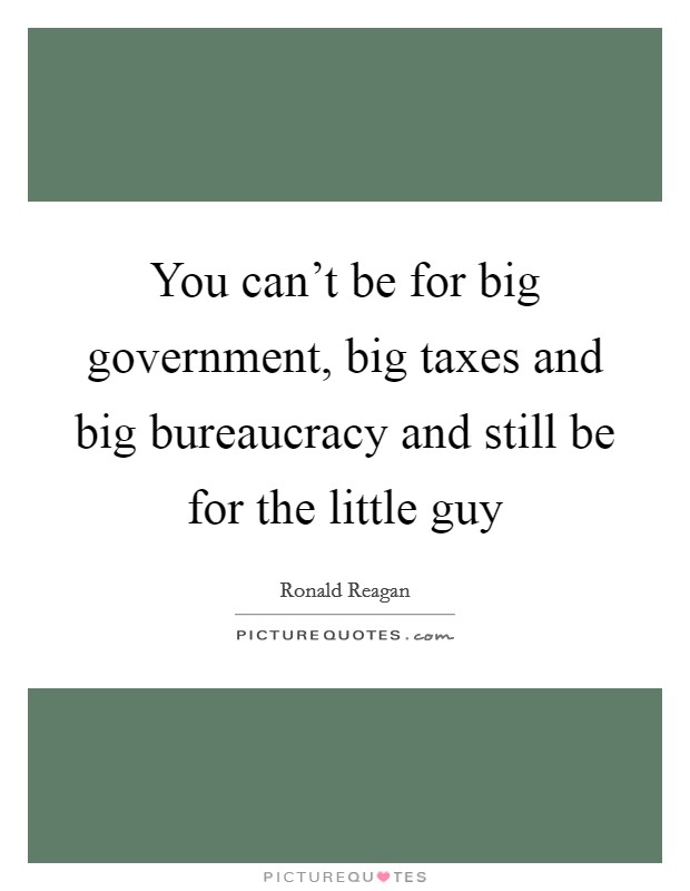 You can't be for big government, big taxes and big bureaucracy and still be for the little guy Picture Quote #1