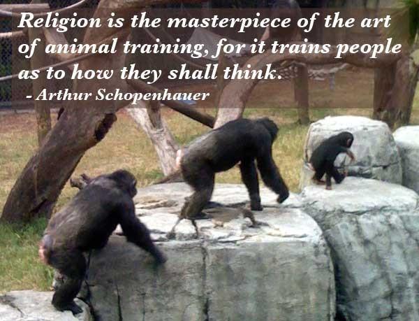 Arthur Schopenhauer Quote About Animals 1 Picture Quote #1