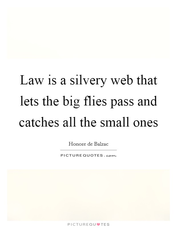 Law is a silvery web that lets the big flies pass and catches all the small ones Picture Quote #1