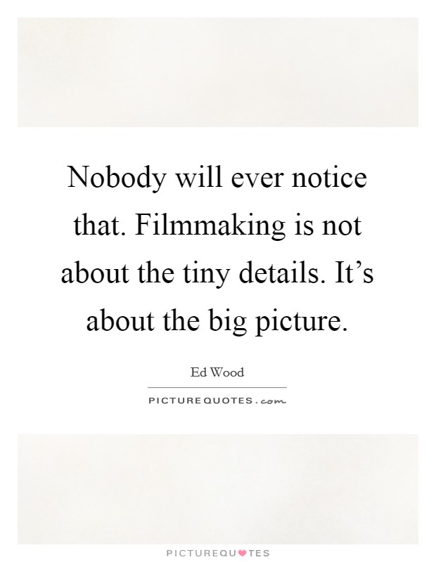 Nobody will ever notice that. Filmmaking is not about the tiny details. It's about the big picture Picture Quote #1