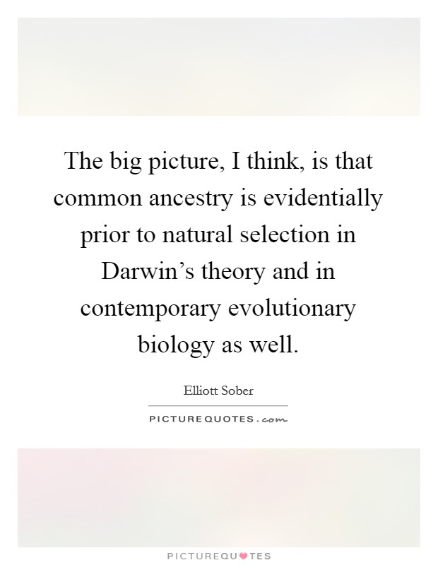 The big picture, I think, is that common ancestry is evidentially prior to natural selection in Darwin's theory and in contemporary evolutionary biology as well Picture Quote #1