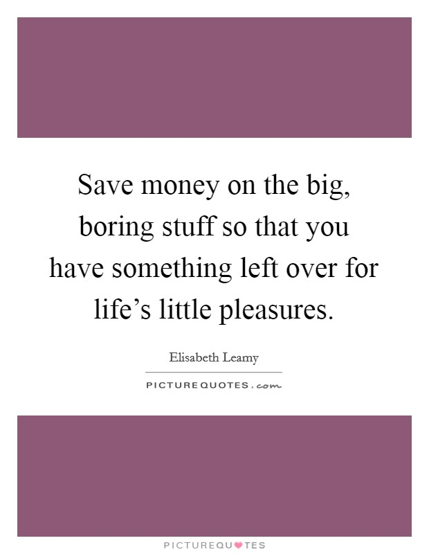 Save money on the big, boring stuff so that you have something left over for life's little pleasures Picture Quote #1