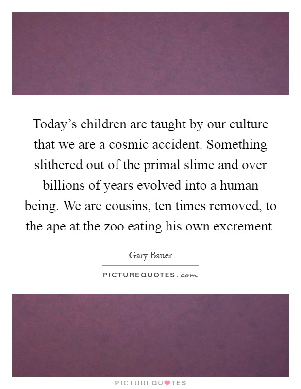 Today's children are taught by our culture that we are a cosmic accident. Something slithered out of the primal slime and over billions of years evolved into a human being. We are cousins, ten times removed, to the ape at the zoo eating his own excrement Picture Quote #1