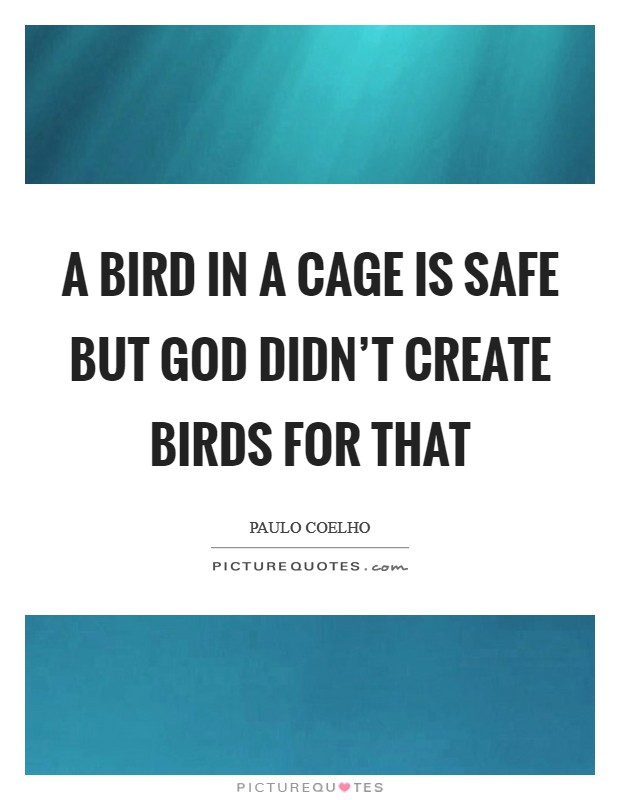 A bird in a cage is safe but God didn't create birds for that Picture Quote #1